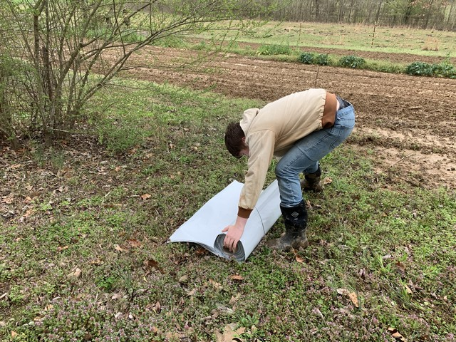 Rolling the tarp