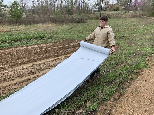 More unrolling the tarp